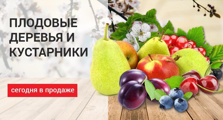 Cocaine карточкой Орехово-Зуево Гаш безкидалова Красноярск